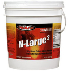 ProLab- N- Large 2, Strawberry 10lbs
