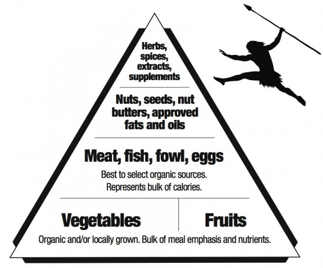 The Paleo Diet is not a diet at all. It's actually one of the ...
