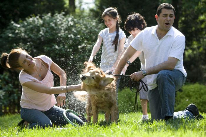 pet with family